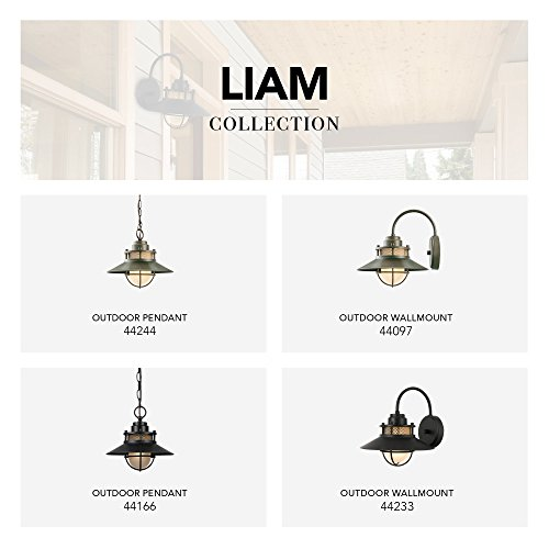 Globe Electric Liam Outdoor Pendant, Matte Black by Globe Electric (Image #5)