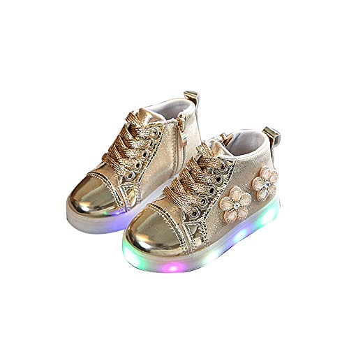 edv0d2v266 Children Kid Girls Boys Led Light Star Luminous Sport Mesh Student Casaul Shoes(Gold 25/8.5MUSToddler) -