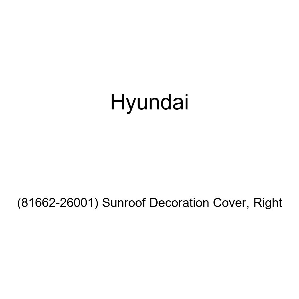Genuine Hyundai Right Sunroof Decoration Cover 81662-26001