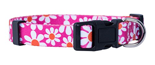 Dog Collar Paisley Pink - Native Pup Flower Dog Collar/Paisley Dog Collar (Large, Pink Daisy)