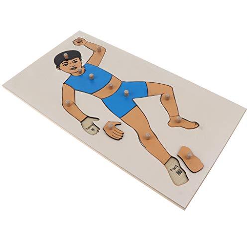 Body Puzzle Wood (Fityle Kids Montessori Toy - Wooden Boy Body Peg Puzzle, Preschool Teaching Aids)