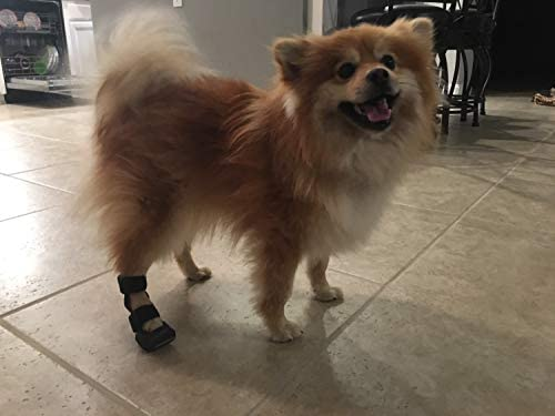 3D Orthosis Dog and Cat Rear Leg Splint for Pets Brace