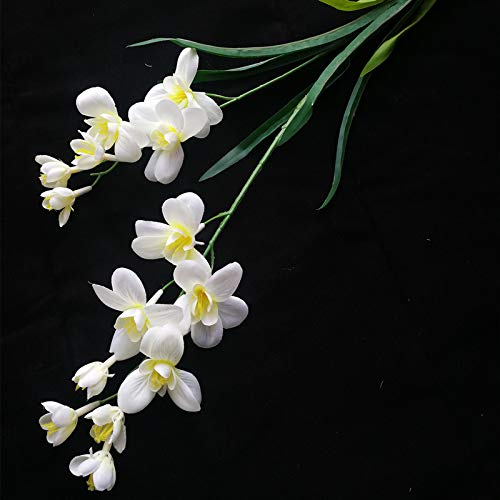 jiumengya 10pcs Artificial Freesia Flower Fake Butterfly Orchid Silk Cattleya White Color 14 Heads Cymbidium Orchid Flowers (White)