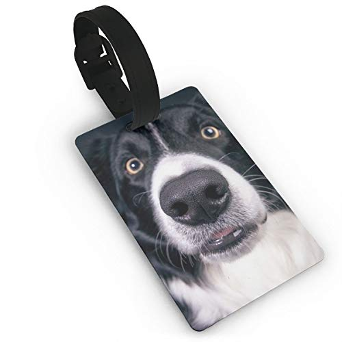 PhyShen Border Collie & Dog PVC Luggage Tags with LeatherWristband Suitcase Labels Travel Bag Accessories Delicate Printing