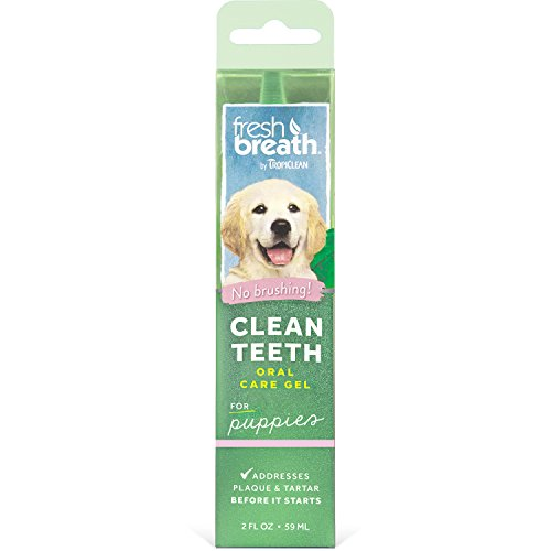 Fresh Breath by TropiClean Dental & Oral Care No Brushing Clean Teeth Gel for Puppies 2 oz, Mint Flavor