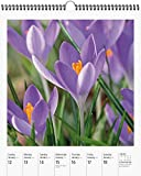 Flowers Page-A-Week Gallery Wall Calendar 2020