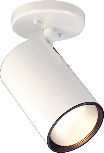 Nuvo SF76/418 White 1 Light R30 Straight - Straight Fixture Cylinder Light