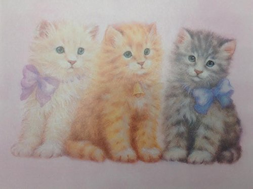11-three-sweet-kittens-pink-blank-notecards