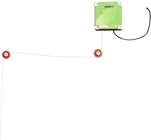 Kerbl - Puerta corredera automática de gallinero (220 x 330 mm ...