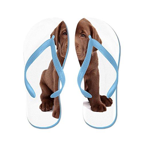 Cafepress Chocolate Labrador Puppy - Chanclas, Sandalias Thong Divertidas, Sandalias De Playa Caribbean Blue