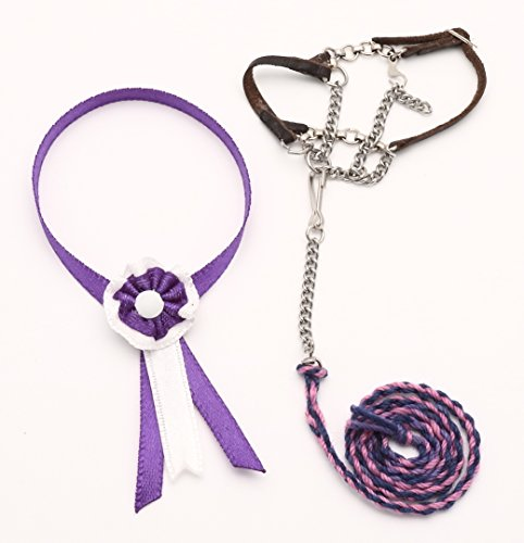 Handmade Lead - Miniature Chain Halter with Lead Rope and Shash for Schleich Model Draft Horses - Handmade