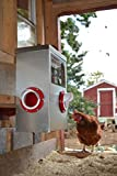 25LB Outdoor Rainproof Galvanized Chicken Feeder 20 Liter Capacity