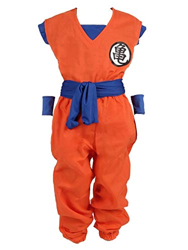 Dragon Ball Children Costume, Son Gokus Training Suit at Master Roshis (130)