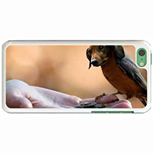 Lmf DIY phone caseCustom Fashion Design Apple ipod touch 5 Back Cover Case Personalized Customized Diy Gifts In Big WhiteLmf DIY phone case