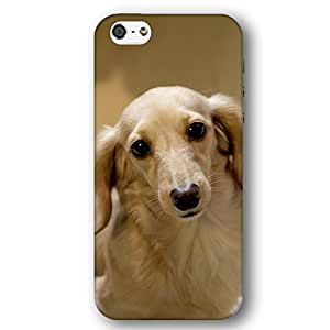 Longhair Dachshund Dog Puppy For Iphone 4/4S Case Cover lim Phone Case