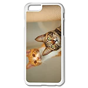 Cat Funny Plastic Cases For IPhone 6