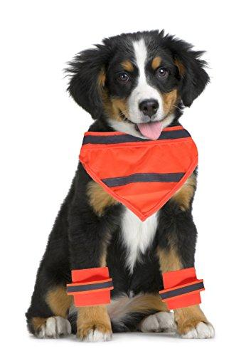 ElitePetGear Reflective Dog Bandana and Leg Wraps (Orange/Small) (Bandana Safety)