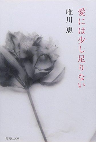 愛には少し足りない (集英社文庫)
