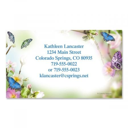 Amazon butterfly delight business cards set of 250 2 x 3 1 butterfly delight business cards set of 250 2quot x 3 12 colourmoves