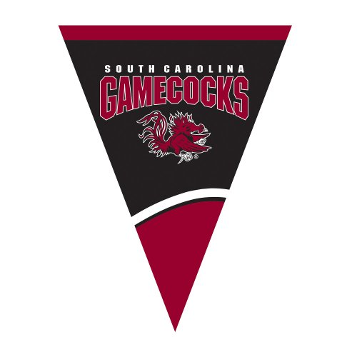 Creative Converting University of South Carolina Plastic Flag Banner, 9-Feet