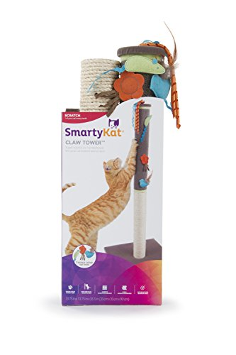 41OfAoIwsJL - SmartyKat Post Cat Scratchers