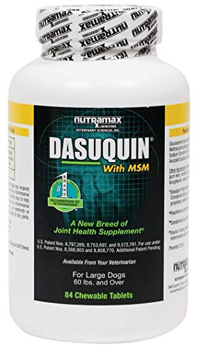 Nutramax Dasuquin with MSM Chewables, Large Dog, 84 Count