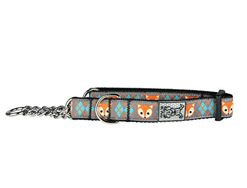RC Pet Products 3/4'' Training Martingale Dog Collar, Medium, Fox by RC Pet Products