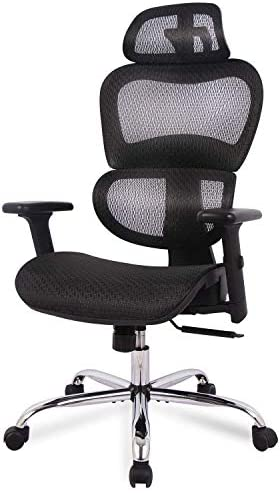 Office Chair, Ergonomics Mesh Chair Computer Chair Desk Chair High Back Chair w Adjustable Headrest and Armrest