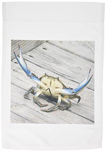 (3dRose fl_63150_1 Blue Crab Marine Creature Animal Wildlife Ocean Invertebrate Blue Crab Seafood Garden Flag, 12 by 18-Inch)