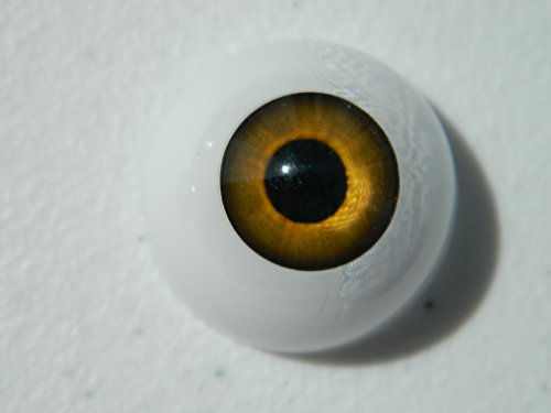 26mm Pair of Realistic Life Size Acrylic Half Round Hollow Back Eyes for Halloween PROPS, MASKS, DOLLS or Bears (Half Bear Halloween)