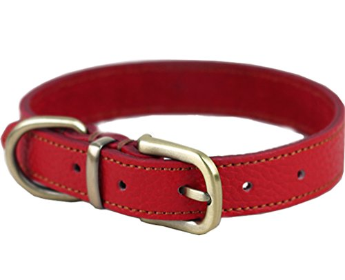 Tellpet Real Leather Dog Collar, Red, Medium