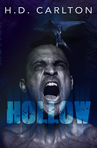 Hollow (The Zero Saga Book 1)