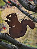 Elegant Garden Design Nibbling Squirrel, Steel Silhouette with Rusty Patina Review