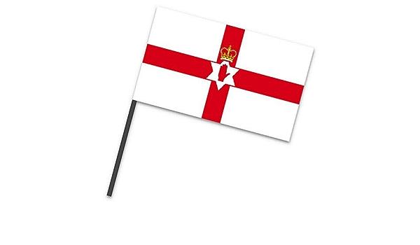 idealWigsNet Bandera de Tela pequeña de Irlanda del Norte en un Palo - 9