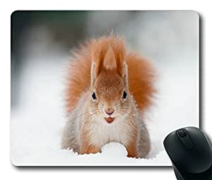 Squirrels In The snow Cute Masterpiece Limited Design Oblong Mouse Pad by Cases & Mousepads
