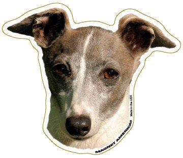 Italian Greyhound Magnet