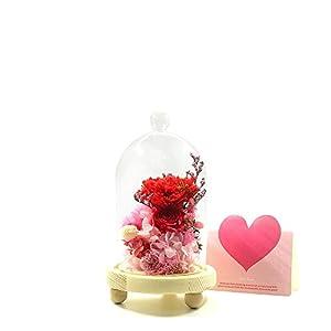 WOOYOYO Preserved Fresh Flower Glass Immortal Carnation Flower Gift for Mother's Day 78