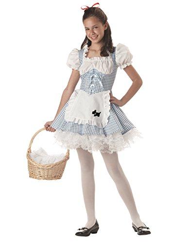 Tween Storybook Sweetheart Costume - Child Size 8-10 ()