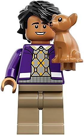 LEGO Ideas Big Bang Theory Minifigure Raj Koothrappali Mini Fig 21302