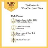 Burt's Bees Toothpaste, Natural Flavor, Fluoride
