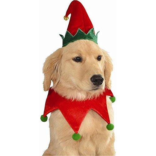 Elf Hat and Collar Pet Costume - Medium/Large