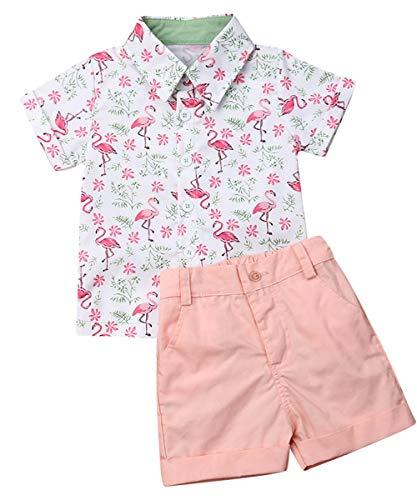 Toddler Little Boy Kids Summer Floral Shirt Bermuda Shorts Outfit Set Clothes (Flamingo Blouse + Pink Shorts Set, 5-6T)