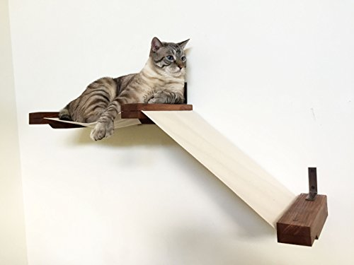 CatastrophiCreations Fabric is the best Cat Shelf? Our review at cattime.com uncovers all pros and cons.