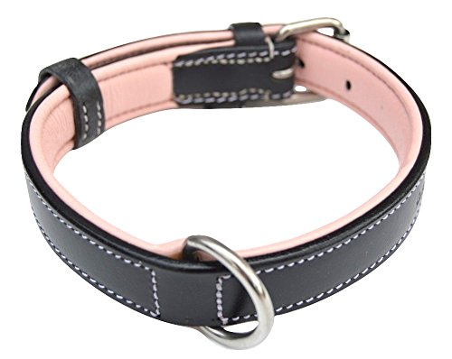 Picture of Soft Touch Collars Small Leather Dog Collar, Padded for Comfort, Black and Light Pink - Great for Female Dogs