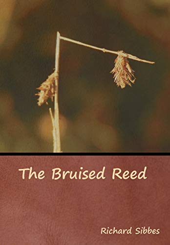 Pdf Christian Books The Bruised Reed