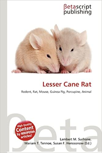 Amazon Lesser Cane Rat Lambert M Surhone Mariam T Tennoe