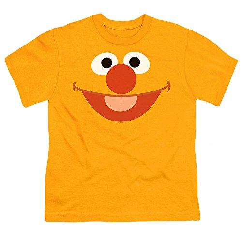 Juvenile Sesame Street Ernie Face T Shirt, Size 5