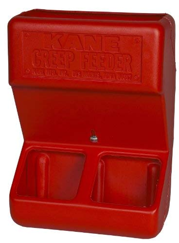 - Kane Baby Pig & Piglets Fence Crate or Wall Mounted Creep Feeder Food Bin