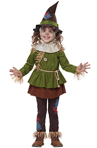 Girl Scarecrow Halloween Costumes (Scarecrow Of OZ - Toddler Size Medium (3-4))