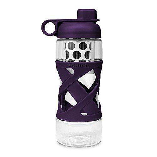 Aquasana Effective 20 oz. Clean Water Bottle with Filter BPA Free Plastic, Plum